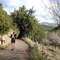 Sa Coma - La Trapa - Sant Elm - Port d'Andratx